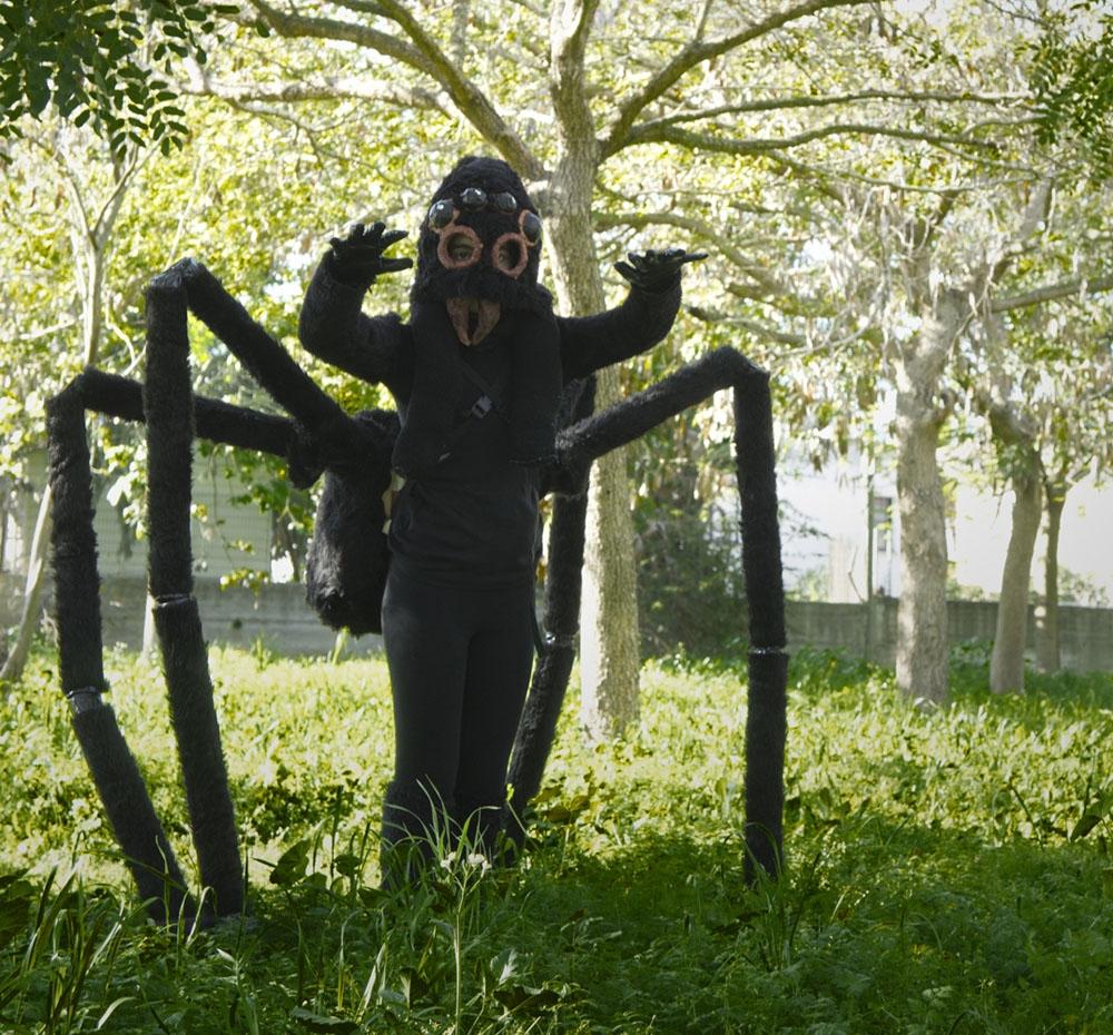 עכביש 2